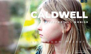 Caldwell Desktop and Mobile Lightroom Preset