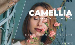 Camellia Desktop and Mobile Lightroom Preset