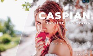 Caspian Desktop and Mobile Lightroom Preset