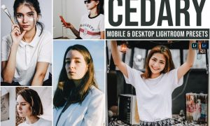 Cedary Mobile and Desktop Lightroom Presets