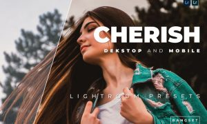Cherish Desktop and Mobile Lightroom Preset
