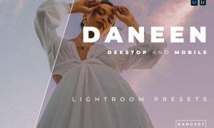 Daneen Desktop and Mobile Lightroom Preset