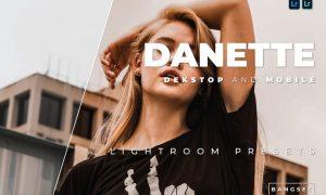 Danette Desktop and Mobile Lightroom Preset
