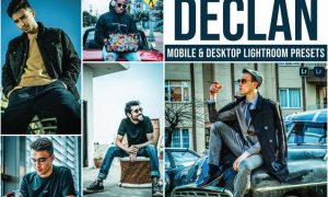 Declan Mobile and Desktop Lightroom Presets