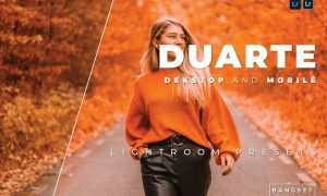 Duarte Desktop and Mobile Lightroom Preset