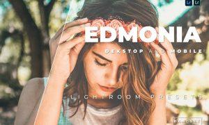 Edmonia Desktop and Mobile Lightroom Preset