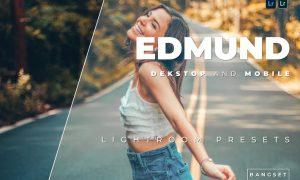 Edmund Desktop and Mobile Lightroom Preset