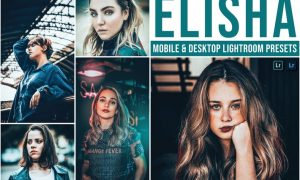 Elisha Mobile and Desktop Lightroom Presets