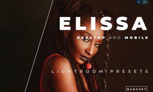 Elissa Desktop and Mobile Lightroom Preset