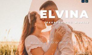 Elvina Desktop and Mobile Lightroom Preset