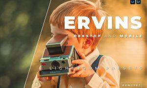 Ervins Desktop and Mobile Lightroom Preset