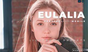 Eulalia Desktop and Mobile Lightroom Preset