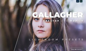 Gallagher Desktop and Mobile Lightroom Preset