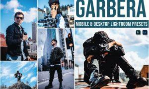 Gerbera Mobile and Desktop Lightroom Presets