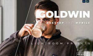 Goldwin Desktop and Mobile Lightroom Preset