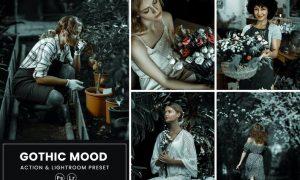 Gothic Mood Photoshop Action & Lightrom Presets