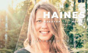 Haines Desktop and Mobile Lightroom Preset