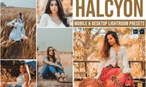 Halcyon Mobile and Desktop Lightroom Presets