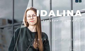 Idalina Desktop and Mobile Lightroom Preset