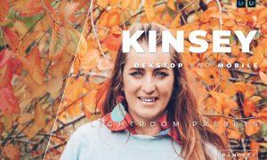 Kinsey Desktop and Mobile Lightroom Preset