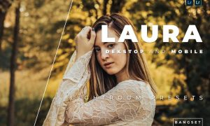 Laura Desktop and Mobile Lightroom Preset