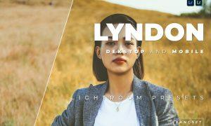 Lyndon Desktop and Mobile Lightroom Preset