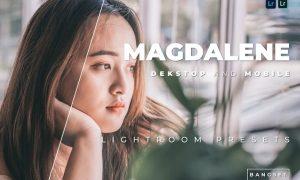 Magdalene Desktop and Mobile Lightroom Preset