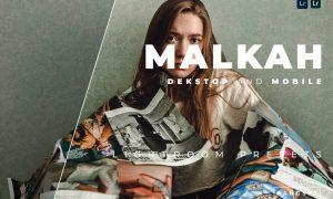 Malkah Desktop and Mobile Lightroom Preset