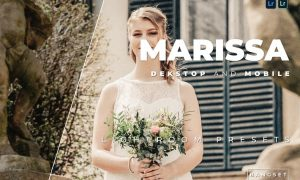 Marissa Desktop and Mobile Lightroom Preset