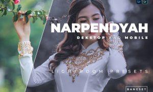 Narpendyah Desktop and Mobile Lightroom Preset