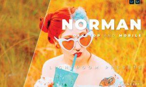 Norman Desktop and Mobile Lightroom Preset
