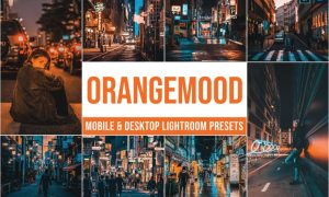 Orange Mood Mobile and Desktop Lightroom Presets