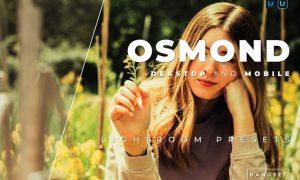 Osmond Desktop and Mobile Lightroom Preset