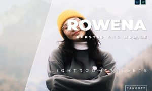Rowena Desktop and Mobile Lightroom Preset