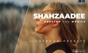 Shahzaadee Desktop and Mobile Lightroom Preset