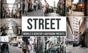 Street Mobile and Desktop Lightroom Presets