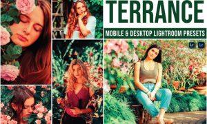 Terrance Mobile and Desktop Lightroom Presets