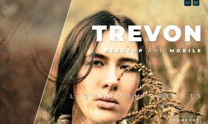 Trevon Desktop and Mobile Lightroom Preset