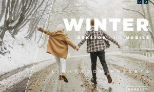 Winter Desktop and Mobile Lightroom Preset