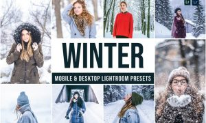 Winter Mobile and Desktop Lightroom Presets