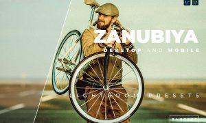 Zanubiya Desktop and Mobile Lightroom Preset