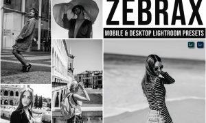 Zebrax Mobile and Desktop Lightroom Presets