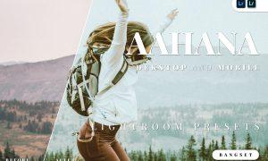 Aahana Desktop and Mobile Lightroom Preset