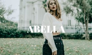 Abella Lightroom Presets Dekstop and Mobile