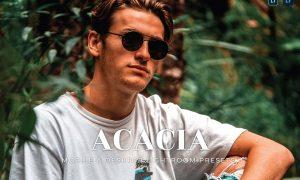 Acacia Mobile and Desktop Lightroom Presets