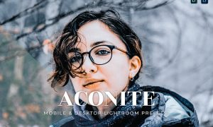 Aconite Mobile and Desktop Lightroom Presets