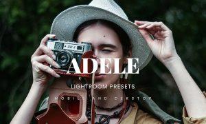 Adele Lightroom Presets Dekstop and Mobile