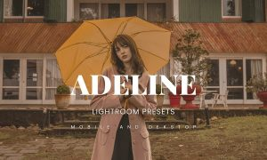 Adeline Lightroom Presets Dekstop and Mobile