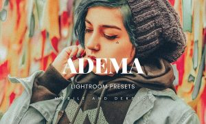 Adema Lightroom Presets Dekstop and Mobile