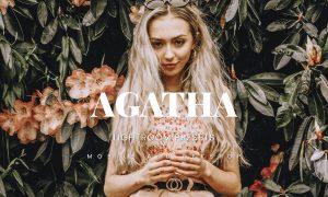Agatha Lightroom Presets Dekstop and Mobile